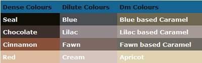 Siamese colours chart