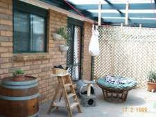 Cat Enclosures and Cat Fences (With Photos) 8