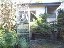 Cat Enclosures and Cat Fences (With Photos) 31