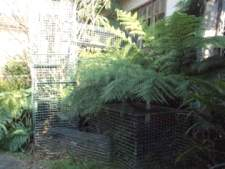 Cat Enclosures and Cat Fences (With Photos) 32