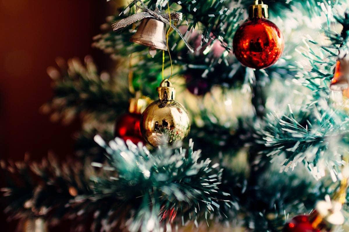 Christmas tree safety around cats