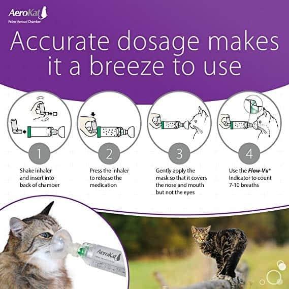 Aerokat inhaler