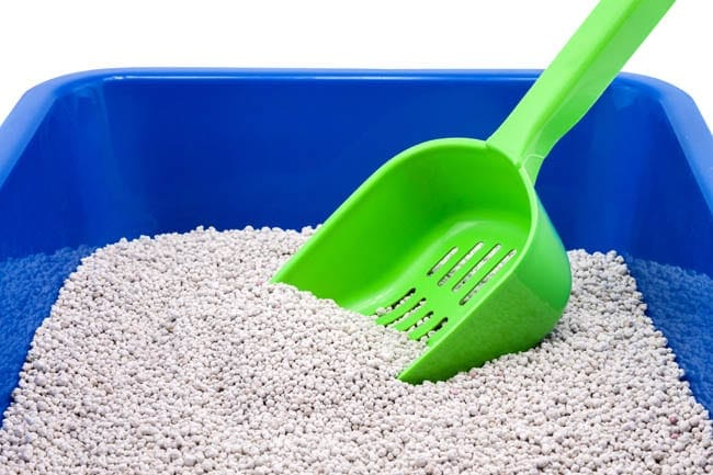 Choosing a litter tray