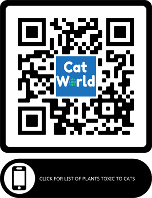 QR code for plants toxic to cats