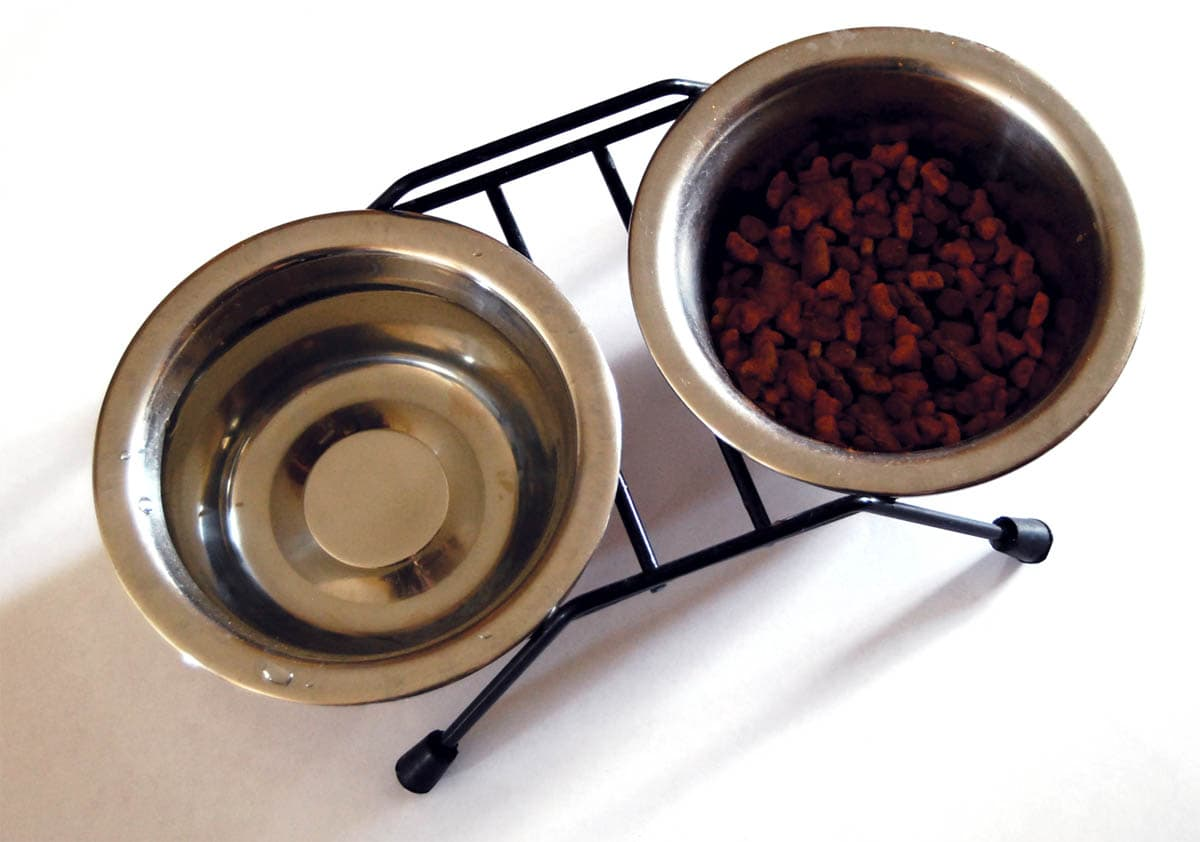 Stainless steel food and water bowls