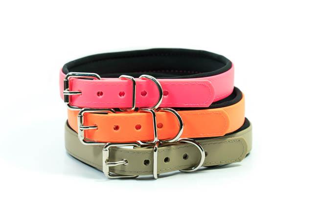 Types of cat collar
