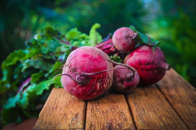 Can cats eat beetroot?