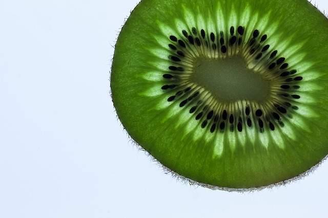 Can cats eat kiwi fruit?
