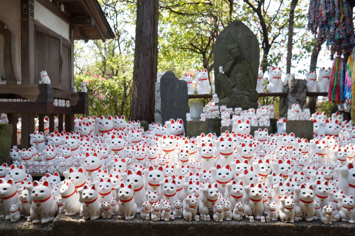 Beckoning cats at Gotokuji Temple in Setagaya