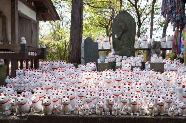 The Beckoning Cat - Maneki Neko or Lucky Cat 1