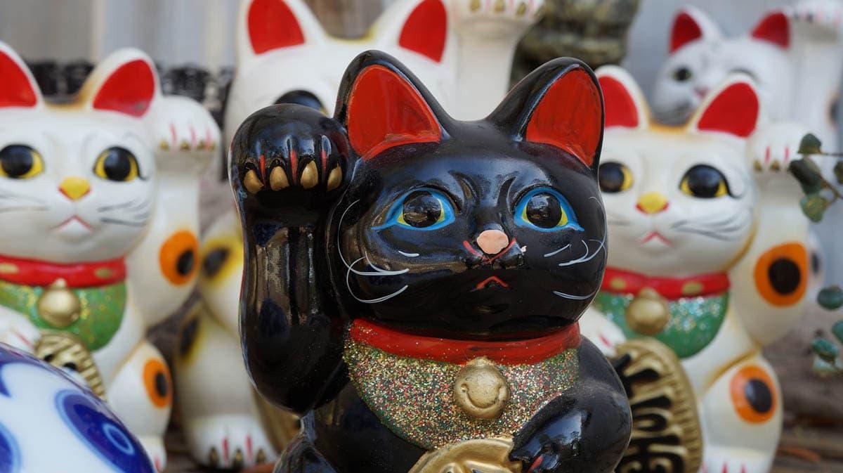 Black beckoning cat