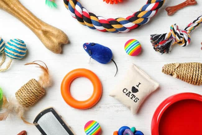Selection of cat toys