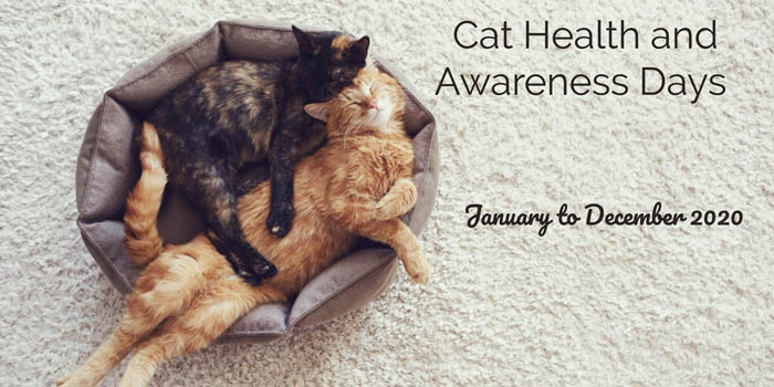 Cat health and awareness days 2020