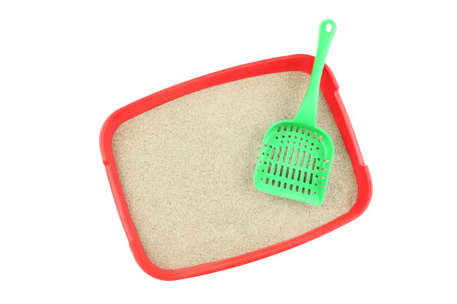 Cat litter trays