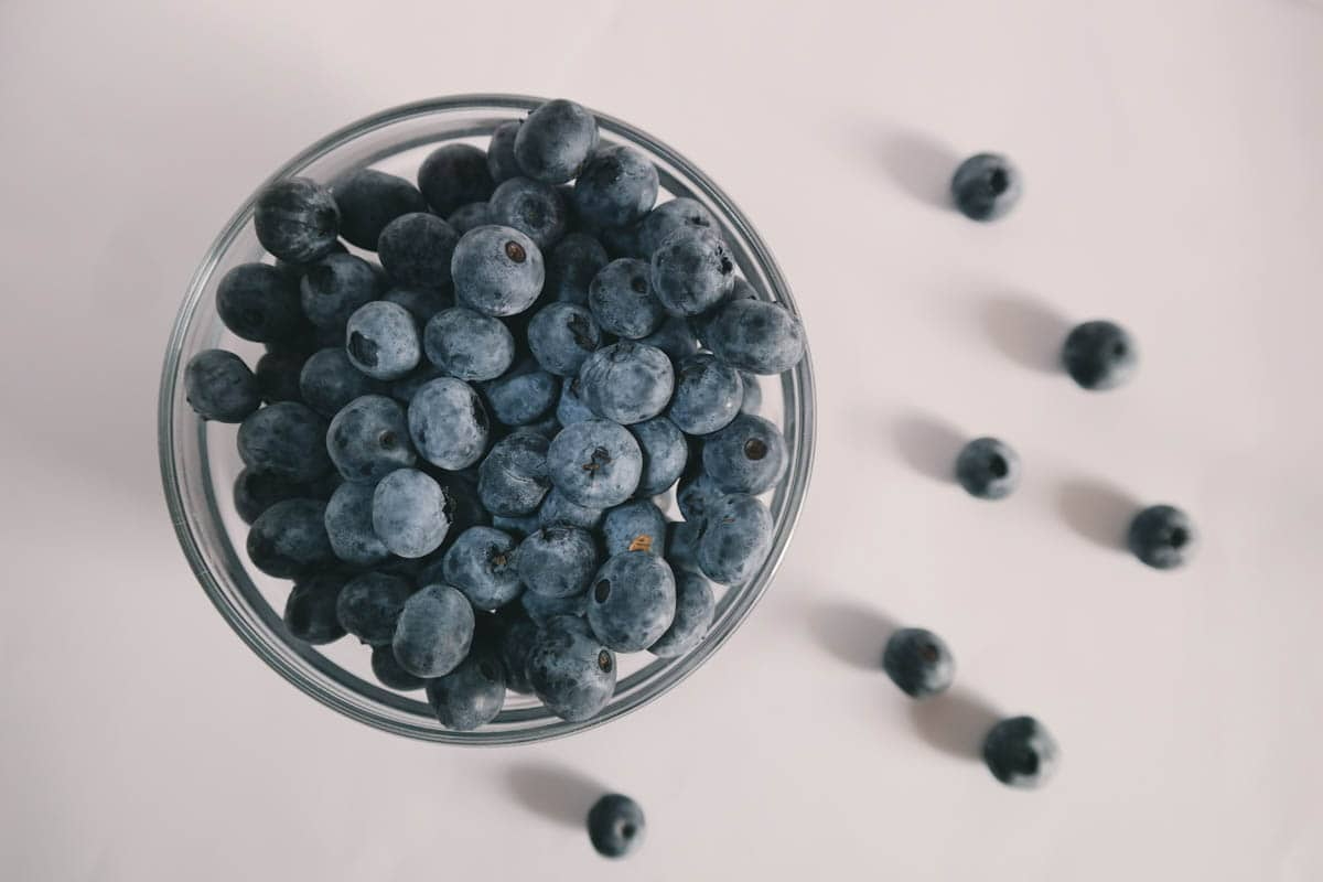 Can Cats Eat Blueberries? Are Blueberries Good For Cats?